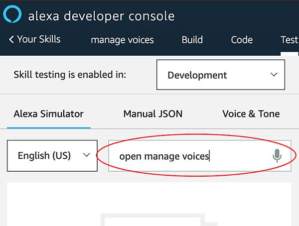 Amazon Alexa Skills Development Voiceflow Tutorial: How to